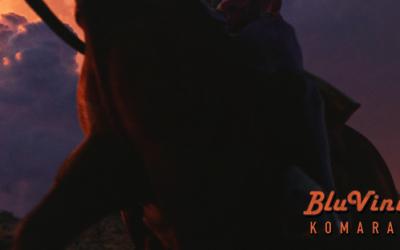 """Šibenski BluVinil opet iznenađuje novim singlom """"Komarac"""""""